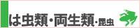ペット検索:爬虫類・両性類・昆虫